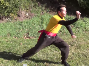 Style kung fu